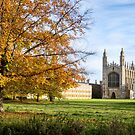 King's College in the autumn by Ana Andres-Arroyo