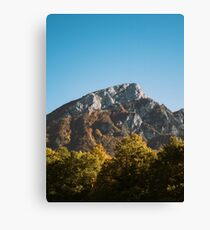 Mountains in the background XXV Canvas Print