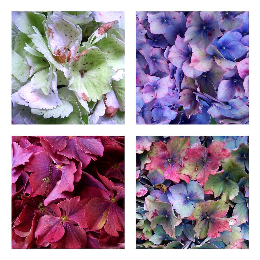 Florals. by undividual