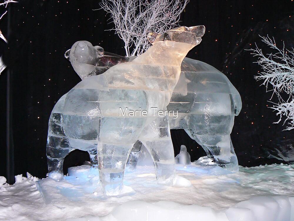 Frozen Bears by Marie Terry