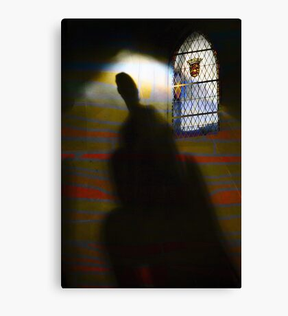 ShadowIncubatingEnlightment Canvas Print