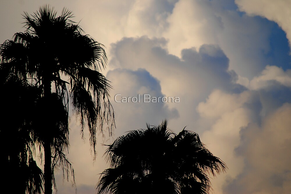 A Tropical Thunderstorm by Carol Barona