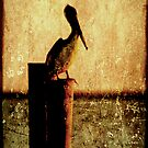 Bayou Solitude by Jonicool
