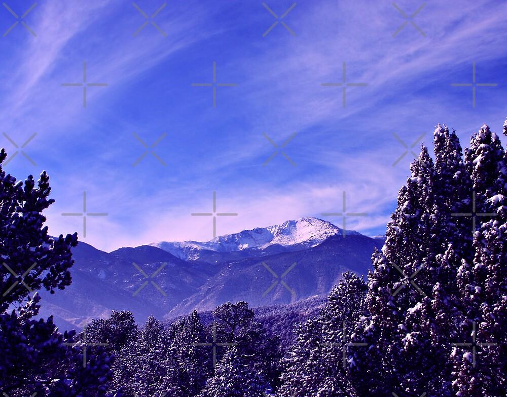A Colorado Winter's Day by Beverlytazangel