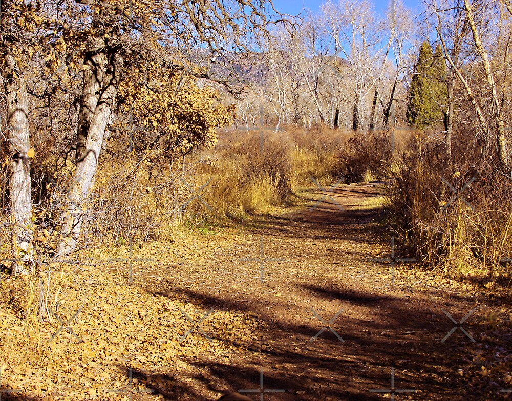 An Autumn Stroll by Beverlytazangel
