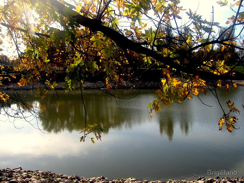 autumn  by BrigiBano