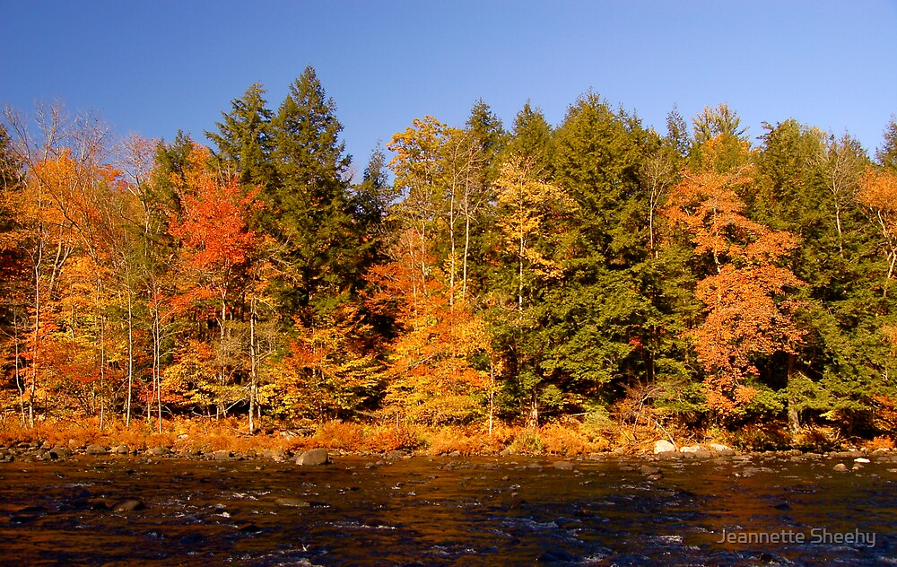Sacandaga River in the Fall by Jeannette Sheehy