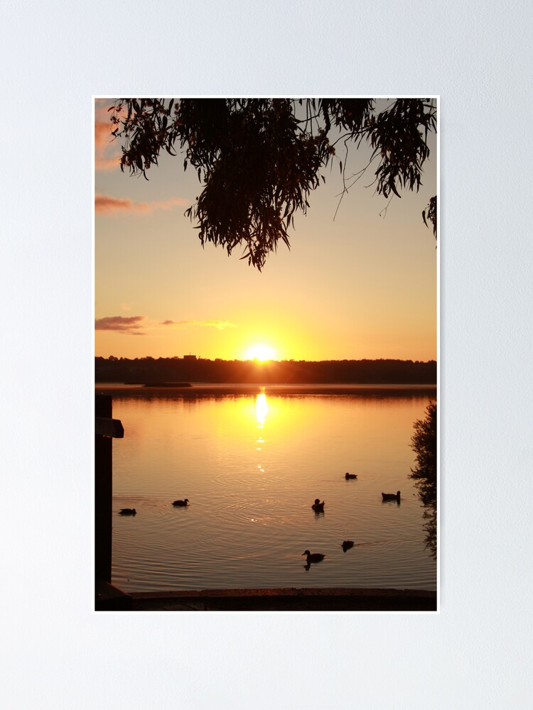 Alternate view of Sunrise over Lake Joondalup Poster