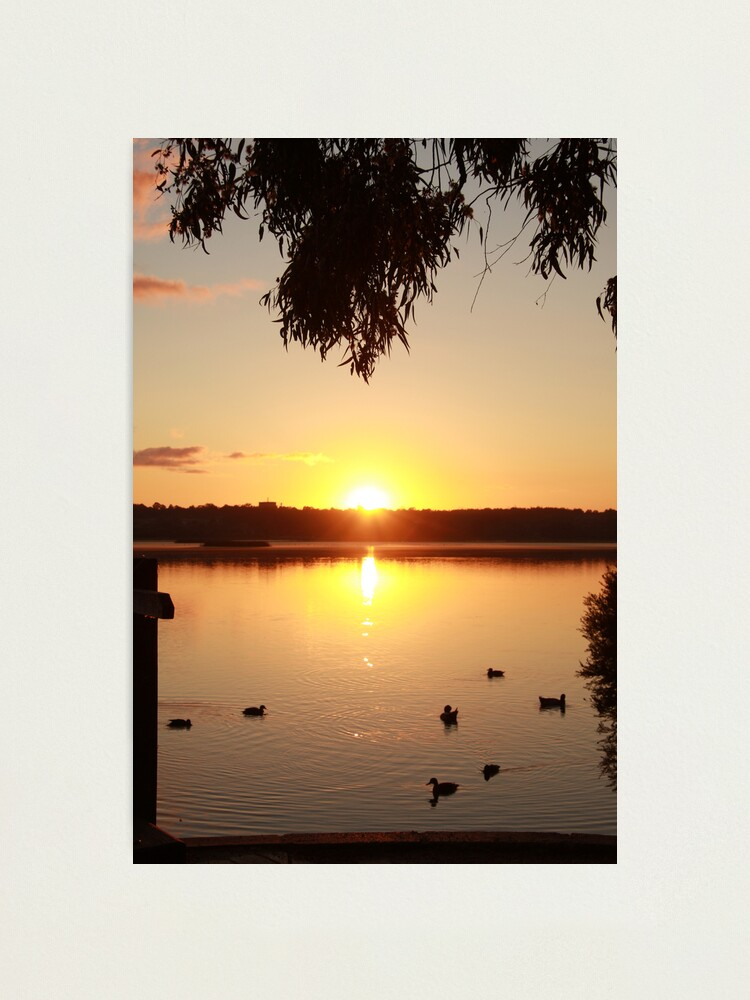 Alternate view of Sunrise over Lake Joondalup Photographic Print