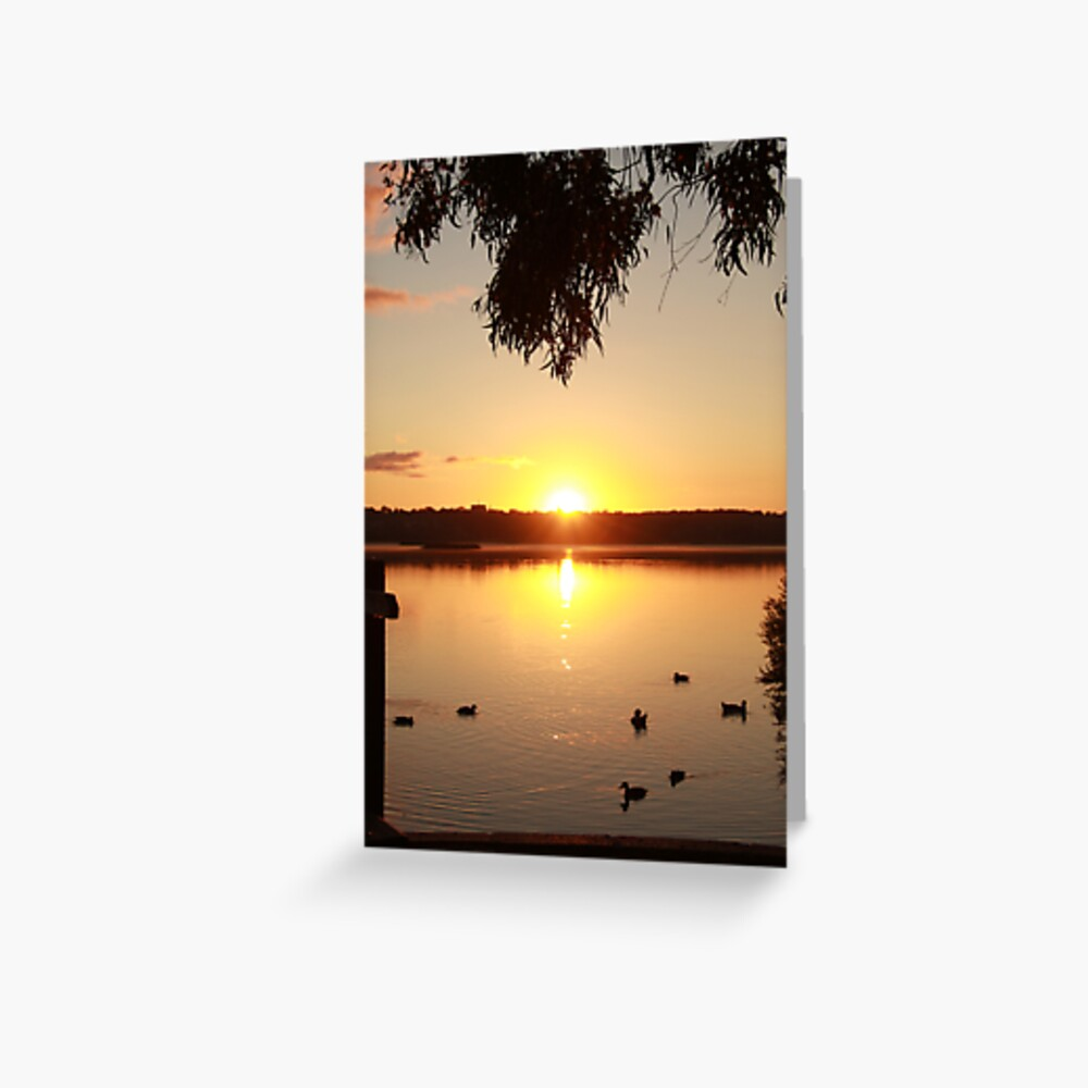 Sunrise over Lake Joondalup Greeting Card