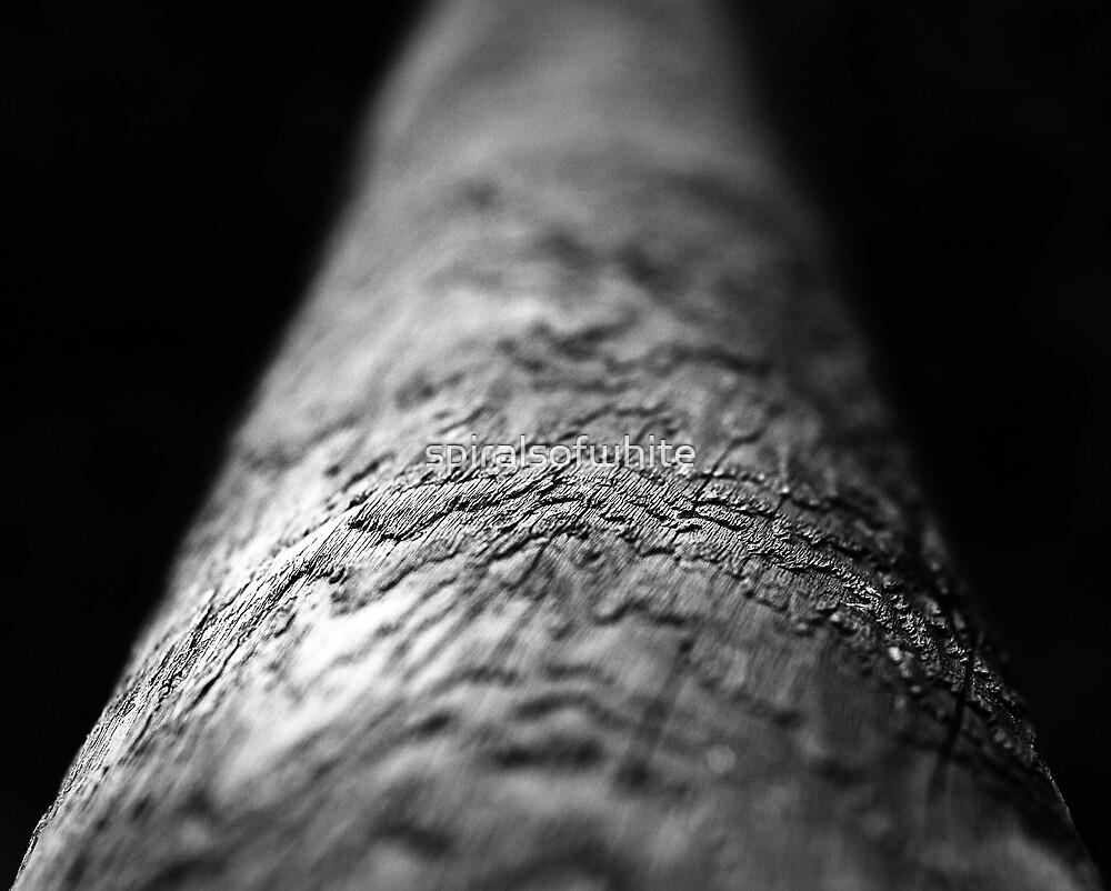log by spiralsofwhite