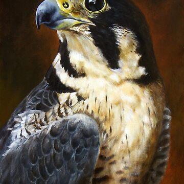Proud - Peregrine Falcon by Aart