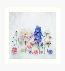 Lámina artística Flores de verano