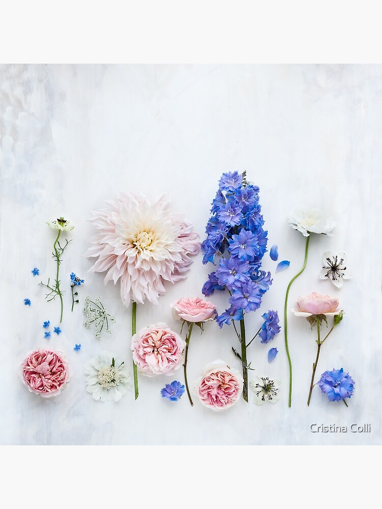 Summer flowers by cristinacolli