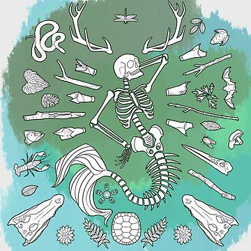 Skeleton Mermaid by freezinghot