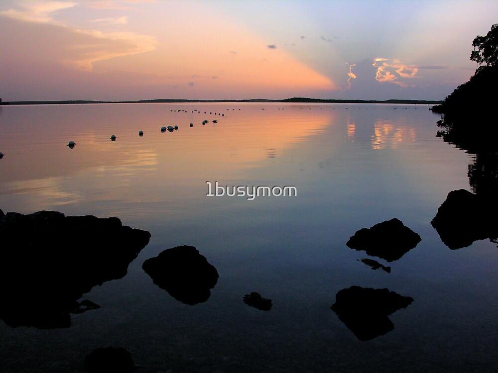 sunrise in key largo by 1busymom