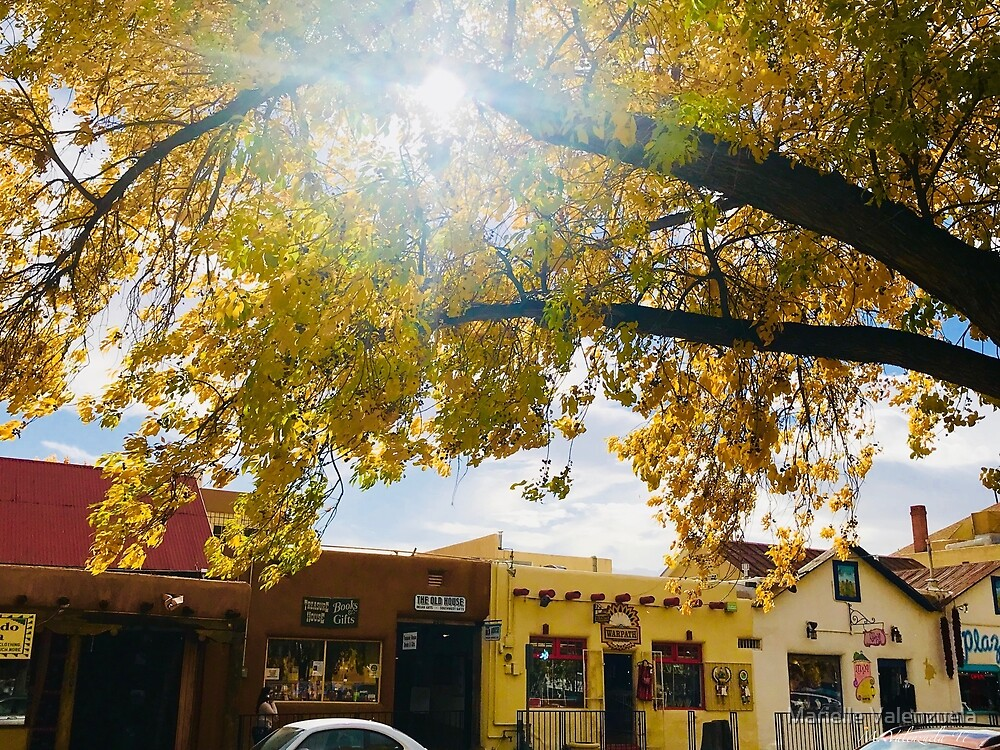 old town plaza albuquerque in autum afternoon glow by marielle