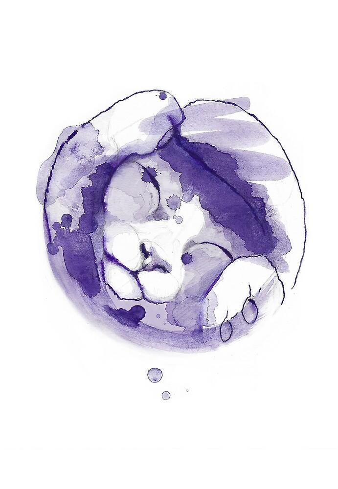 «Purple kitten» de konsulandia
