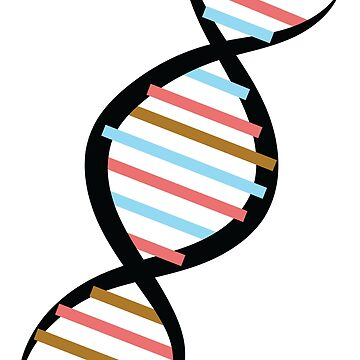 DNA by kimtangdesign