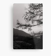 Moody lake district Metal Print