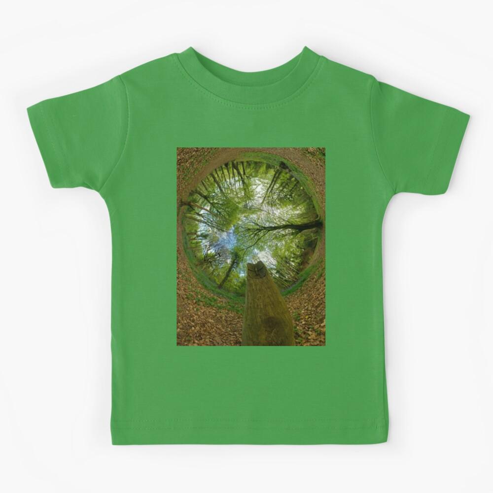 Butterfly Sculpture in Prehen Woods, Derry (Sky-in) Kids T-Shirt