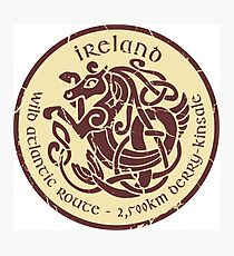 Irish Celtic Sea Horse  Beige+Red Photographic Print