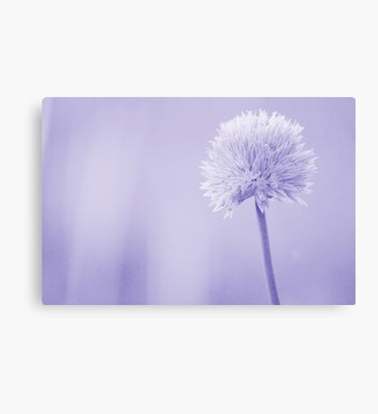 Chive(s) Canvas Print