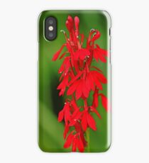 Scarlet Lobelia iPhone Case/Skin