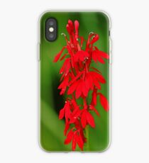 Scarlet Lobelia iPhone Case