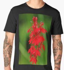 Scarlet Lobelia Men's Premium T-Shirt