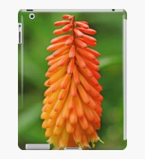 Torch Lily iPad Case/Skin