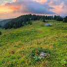 Dusk light on the alpine meadow by Patrick Morand