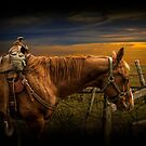 Saddle Horse on the Prairie by Randall Nyhof