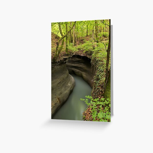 Parnant river through the springtime forest Greeting Card
