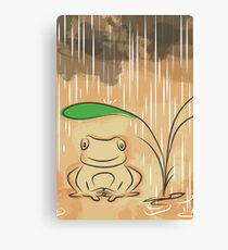 frog in raining day Canvas Print