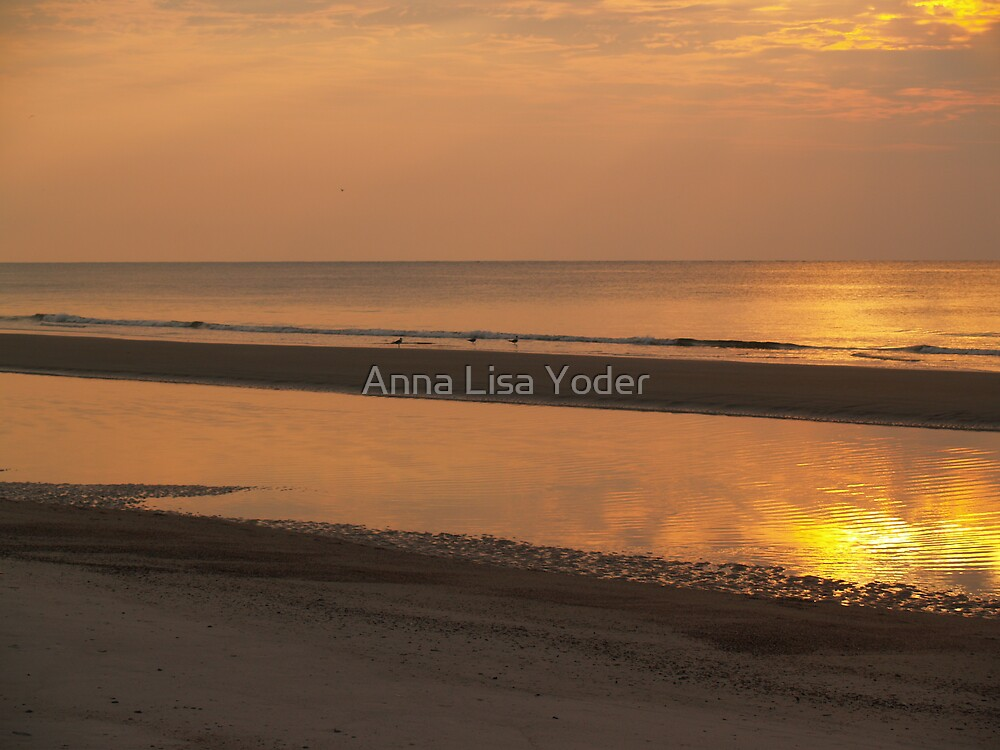 Hunting Island Sunrise Glow by Anna Lisa Yoder