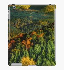Colorful autumnal forests in Alsace, France, seasonal specific, natural landscape iPad Case/Skin