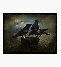 Darkness and Ravens Photographic Print