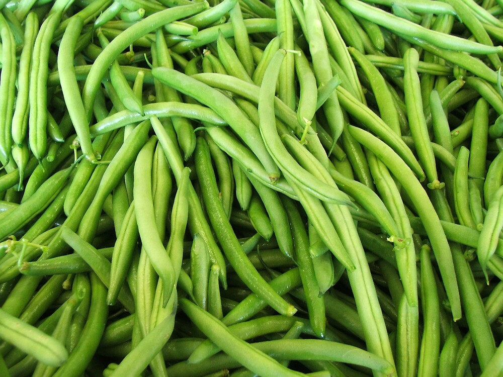 Farm Fresh Beans by Cherie Carlson