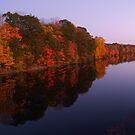 Views of Bucks County, Pennsylvania by Anna Lisa Yoder