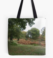 Powerscourt in autumn Tote Bag