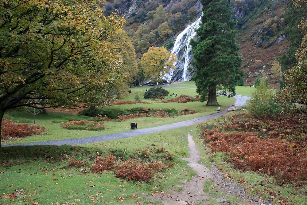 Powerscourt waterfall by John Quinn