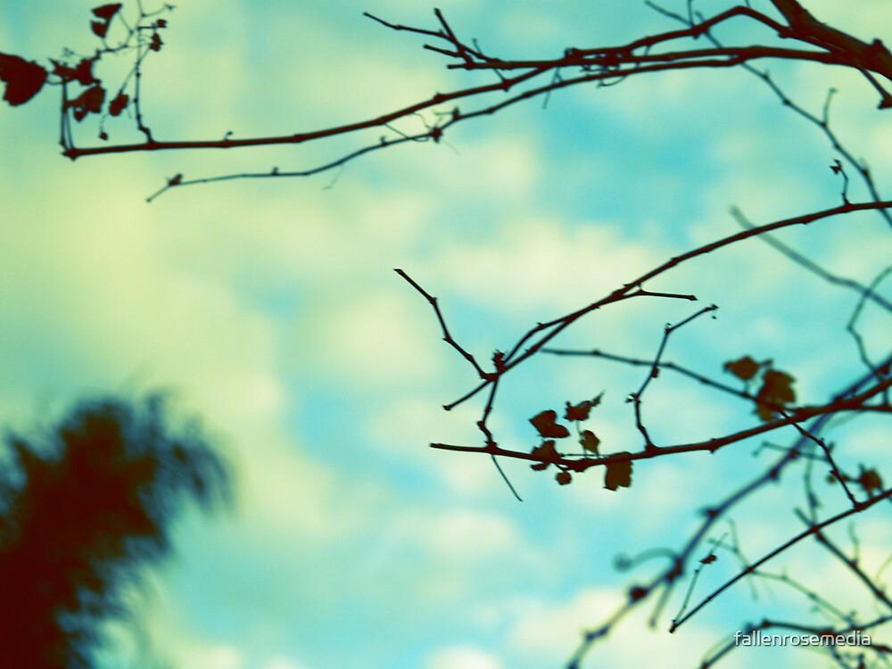 Twigs by fallenrosemedia
