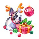Christmas Bulldog Puppy by Anna Bucciarelli