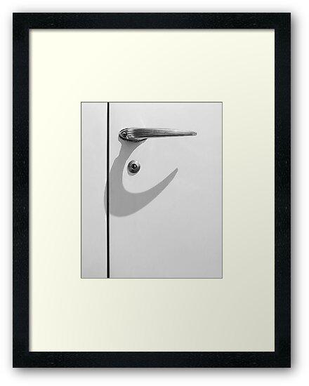 Shadow Hook by Kevin Barrett