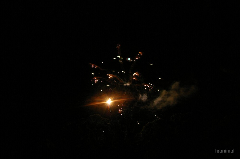 FIREWORKS by leanimal