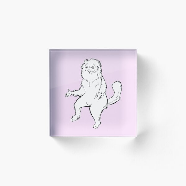 Persian Cat Room Guardian Design Acrylic Block