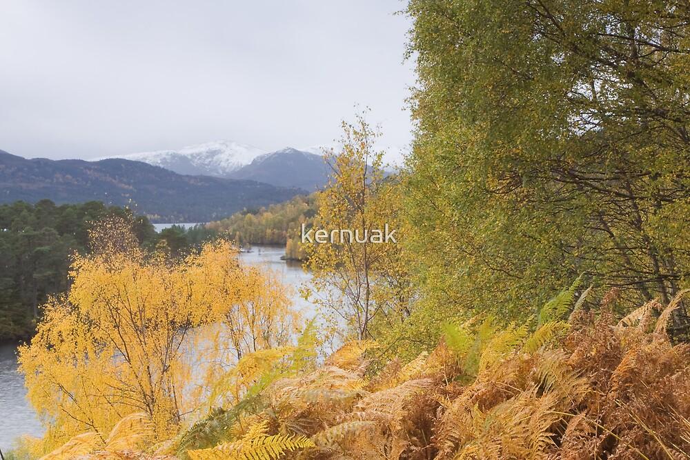 Autumn Affric by kernuak