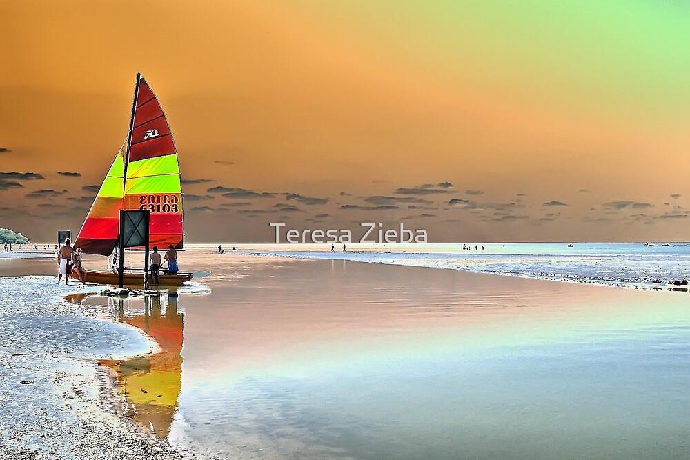 Lone Sail by Teresa Zieba