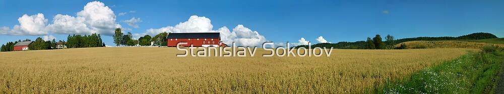 Norwegian Farm Panorama 2  by Stanislav Sokolov